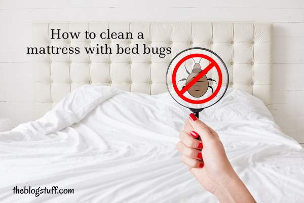 How to clean a mattress that has bed bugs